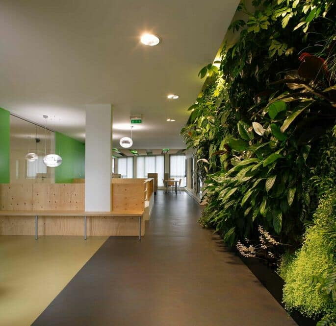 An Eco Office