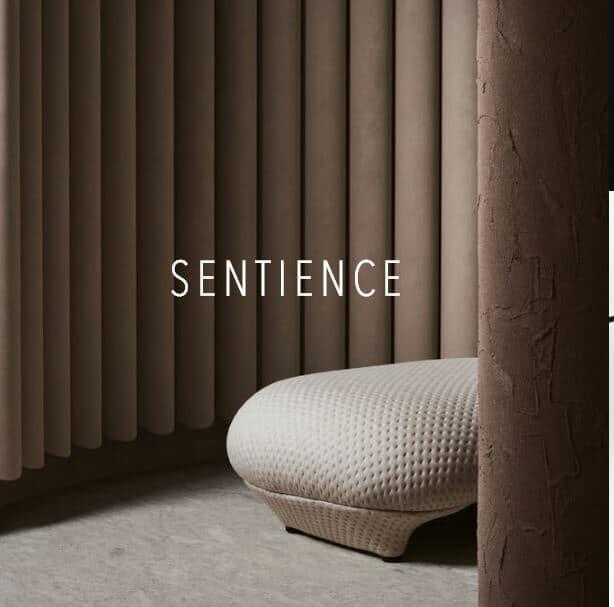 blog-sentience