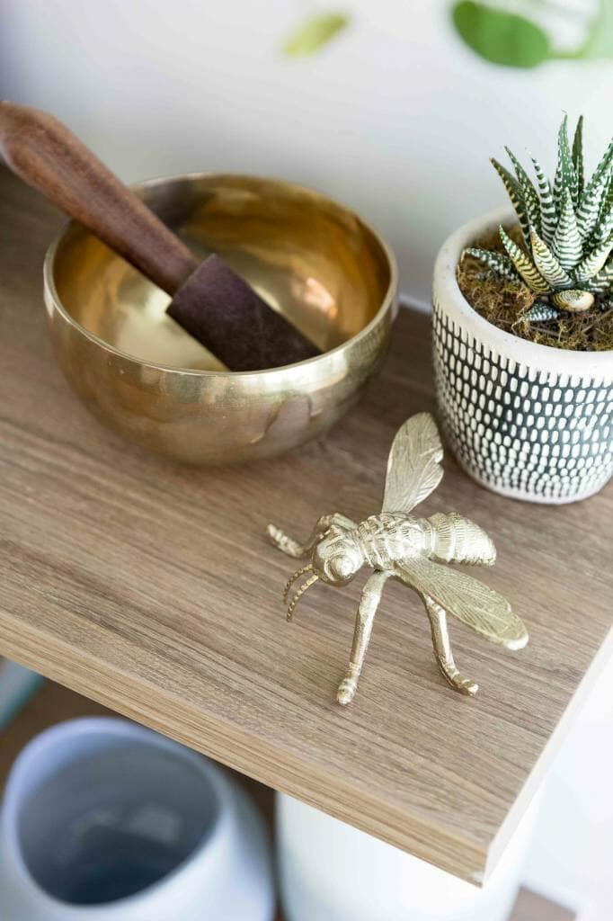 Bee, brass singing bowl and succulent detail on wooden shelf